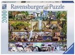 Ravensburger - 2000 piece - Stewart Wild Kingdom Shelves-2000+-The Games Shop