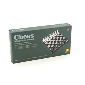 "Chess Set - 10"" magnetic folding"